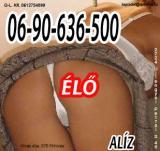 Szuperolcsó telefonszex Alízzal 06-90-636-500